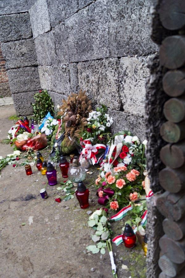 Auschwitz att jämra sig vägg royaltyfri bild