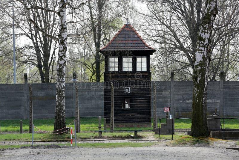 Auschwitz-Birkenau, fotografie stock libere da diritti