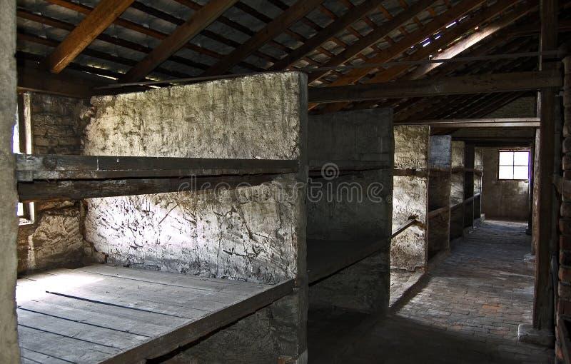 Auschwitz Birkenau Barrack Stone Beds stock images