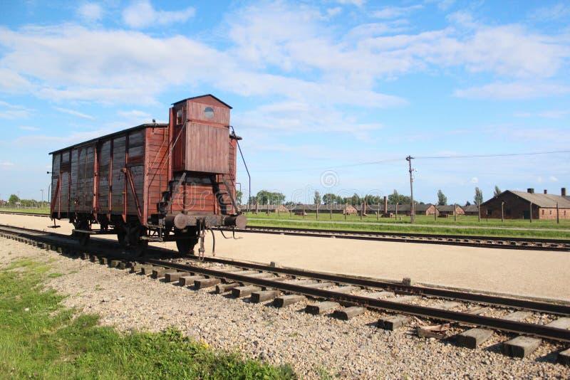 Auschwitz-Birkenau Concentratiekamptrein stock afbeeldingen
