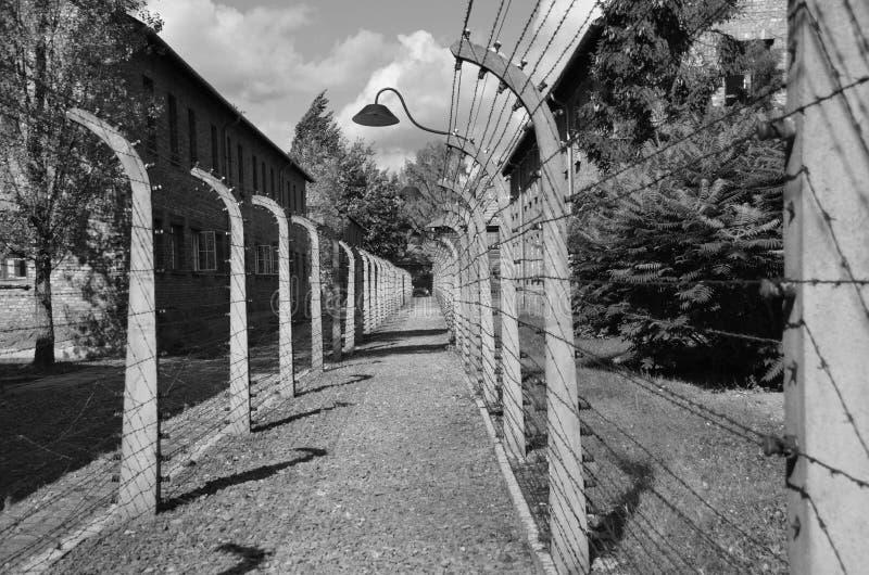 Auschwitz concentration camp fences stock photos