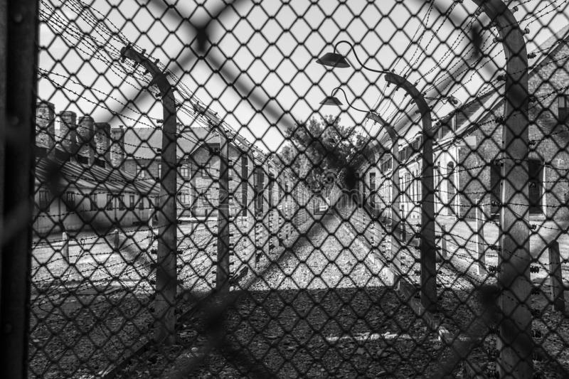 Auschwitz Fence stock photography