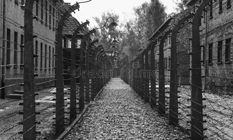 Auschwitz Fences I. A black and white picture of a corridor of fences in the Auschwitz-Birkenau Museum royalty free stock image