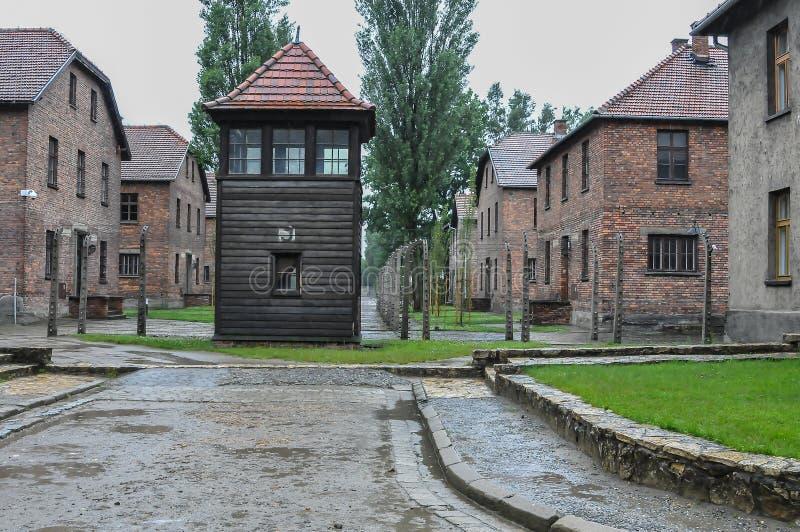 Auschwitz, il peggio che è accaduto mai ad umanità fotografia stock libera da diritti