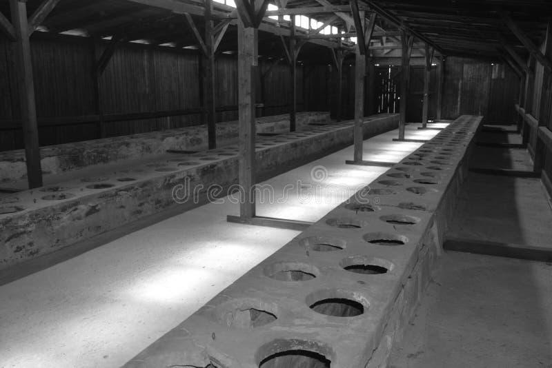 Auschwitz koncentracyjnego obozu toaleta koszaruje obrazy royalty free