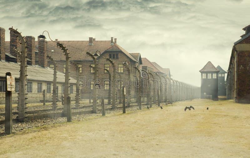 AUSCHWITZ, POLOGNE - 30 mars 2012 musée de mémorial d'holocauste Barbelé autour d'un camp de concentration avec les corneilles et photo libre de droits