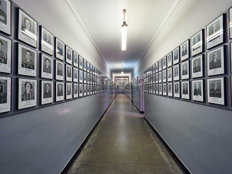 AUSCHWITZ, POLOGNE - 2 SEPTEMBRE 2017 Photos des prisonniers d'Auschwitz qui sont morts dans le camp de concentration, Auschwitz, photographie stock libre de droits