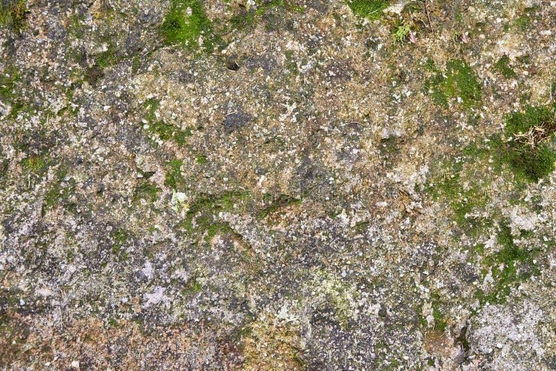 Ausführliche Beschaffenheit des natürlichen dunklen Mineralsteins mit Moos stockfotografie