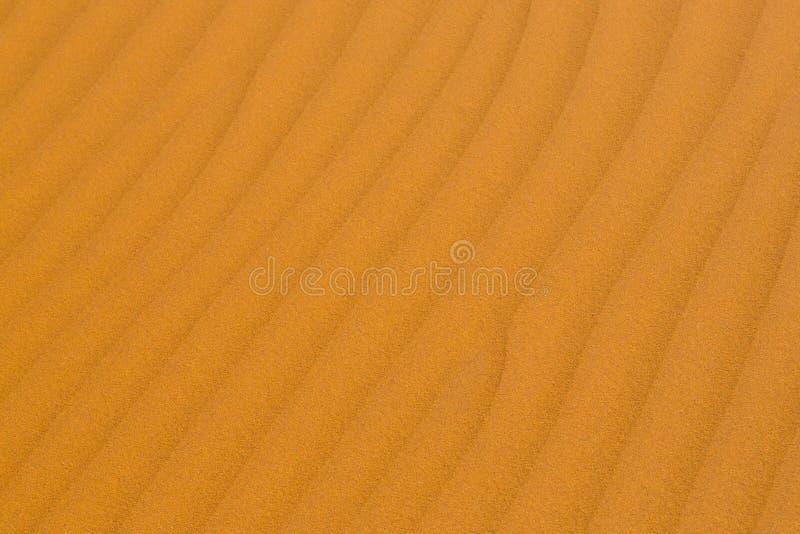 Ausführliche Struktur der Sanddüne in Namibischer Wüste stockbilder