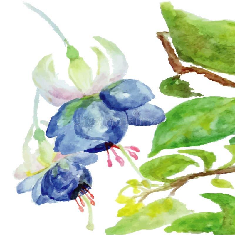 Ausführliche vektorzeichnung Aquarellblumensommer-Hochzeitskarte fuchsia stock abbildung