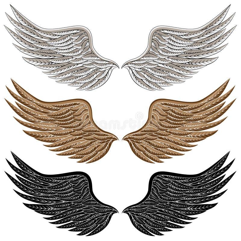Ausführliche Vogel-Flügel lizenzfreie abbildung