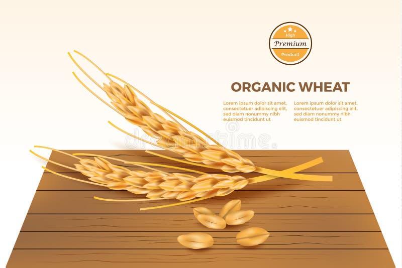 Ausf?hrlicher Weizenvektor auf Holztisch mit infographic vektor abbildung