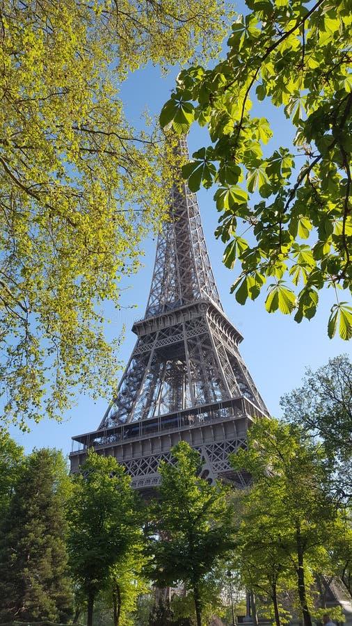 Ausflug Eiffel stockbild
