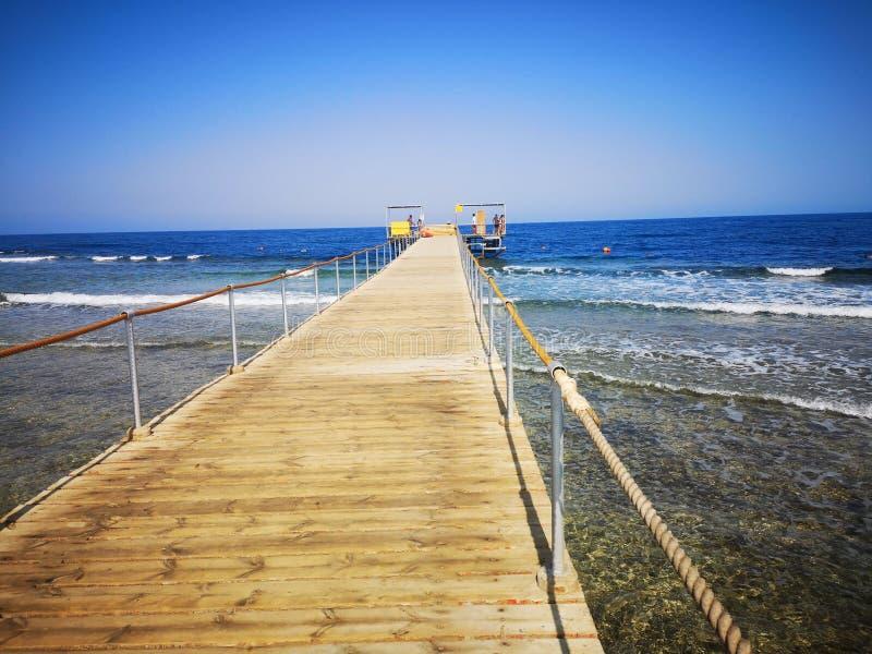 Ausflug-Sommer ?gypten lizenzfreie stockbilder