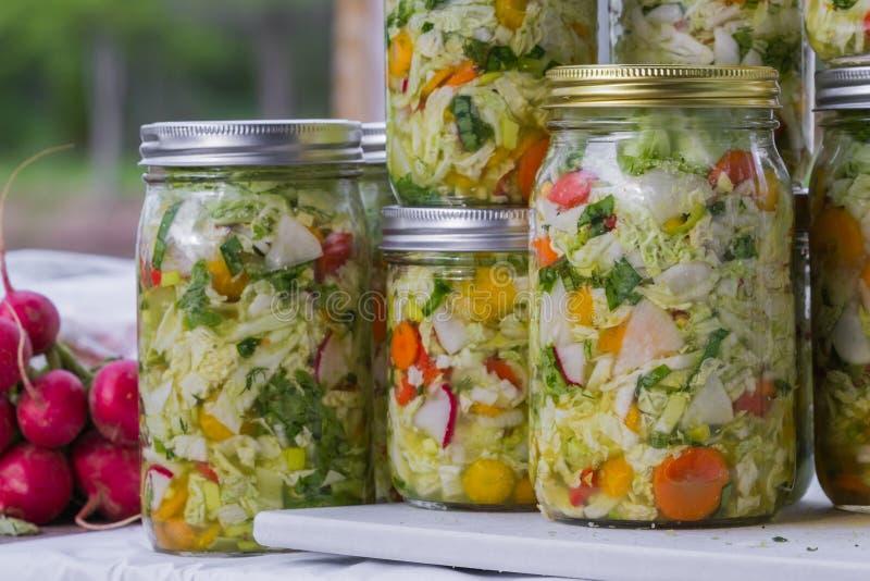 Ausgangsgemacht kultiviertes oder gegorenes Gemüse stockfoto