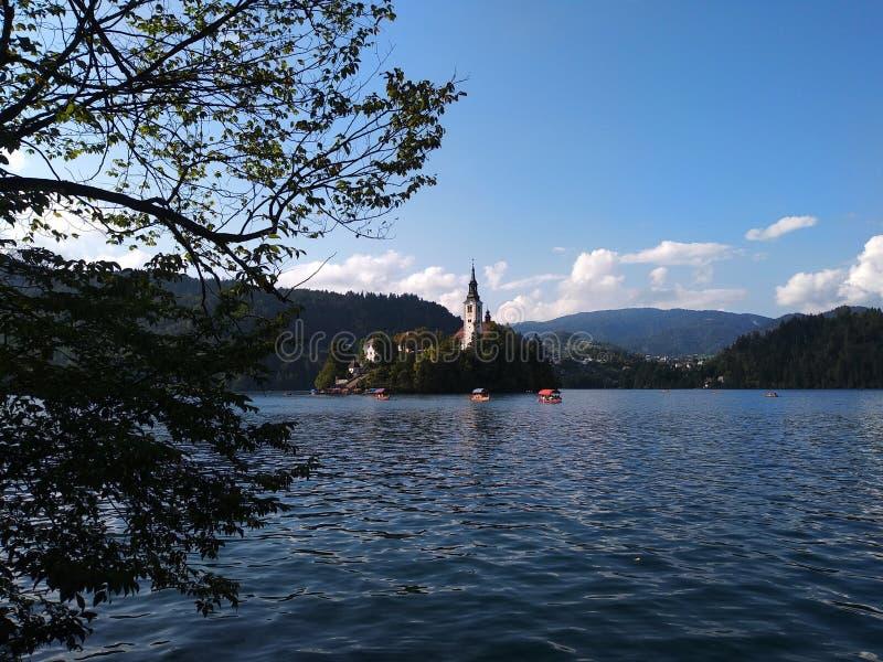 Ausgebluteter See, Kirche in der Insel lizenzfreie stockbilder