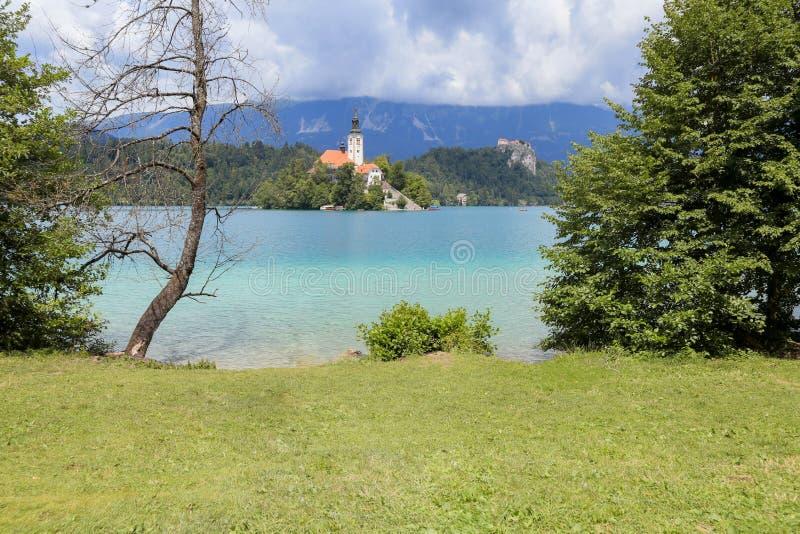 Ausgebluteter See in Slowenien am sonnigen Sommertag stockfotografie