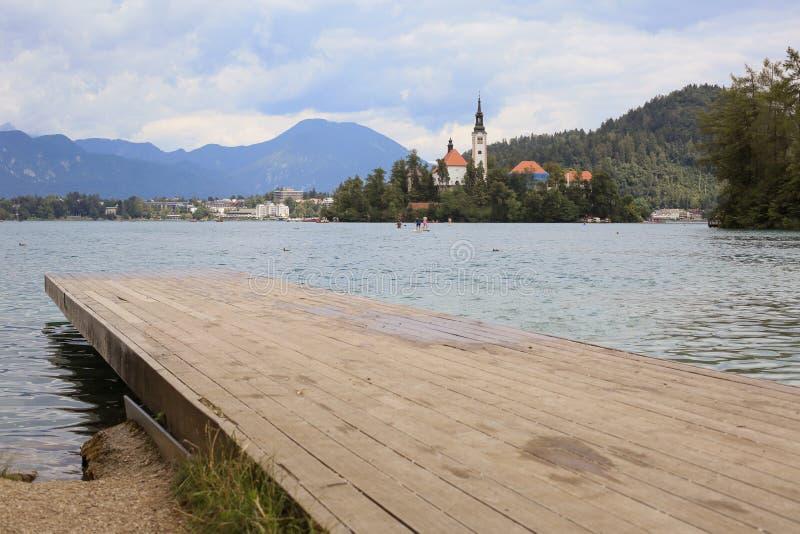 Ausgebluteter See in Slowenien am sonnigen Sommertag lizenzfreie stockbilder