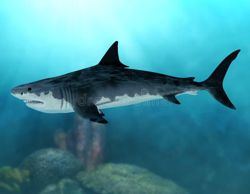 Ausgestorbener Mega- Haifisch Megalodon lizenzfreie abbildung