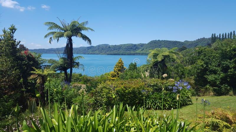 Ausgezeichnete Seeblicke Tarawera, Rotorua, Neuseeland lizenzfreies stockbild