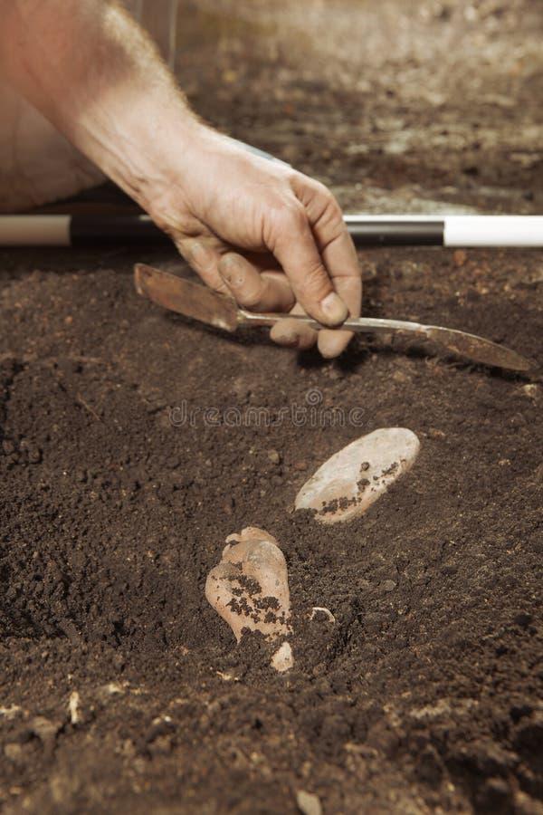 Aushöhlungen des historischen Platzes im Wald - Entdeckung von Artefakten lizenzfreies stockfoto