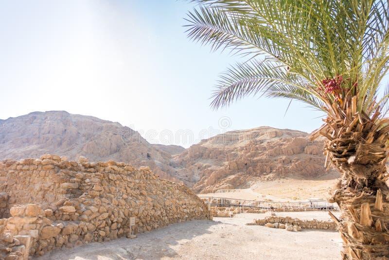 Aushöhlungen in Qumran, wo Essenes-Fellrollen mit der Bibel lizenzfreie stockbilder