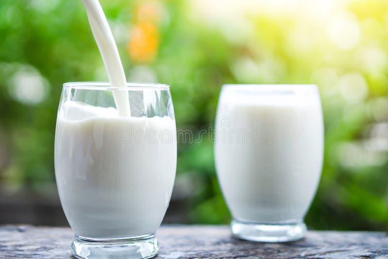 Auslaufende Milch auf Trinkglas über Natursonnenlicht-Morgenhintergrund lizenzfreies stockbild