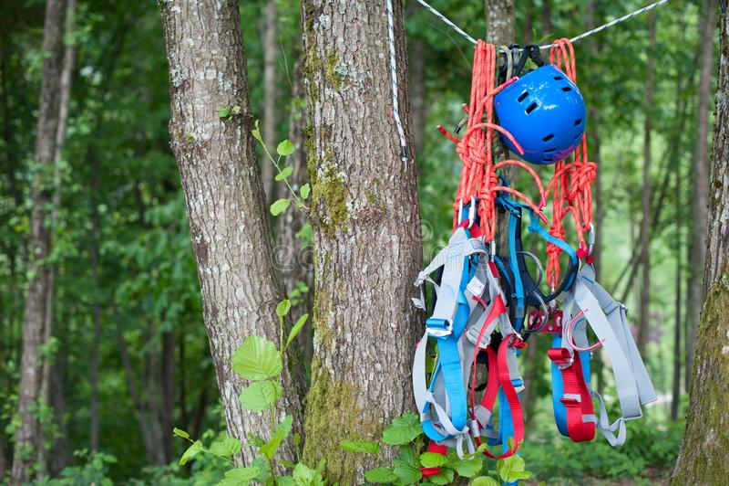 Ausrüstung für das zipline, das am Baum hängt stockbild