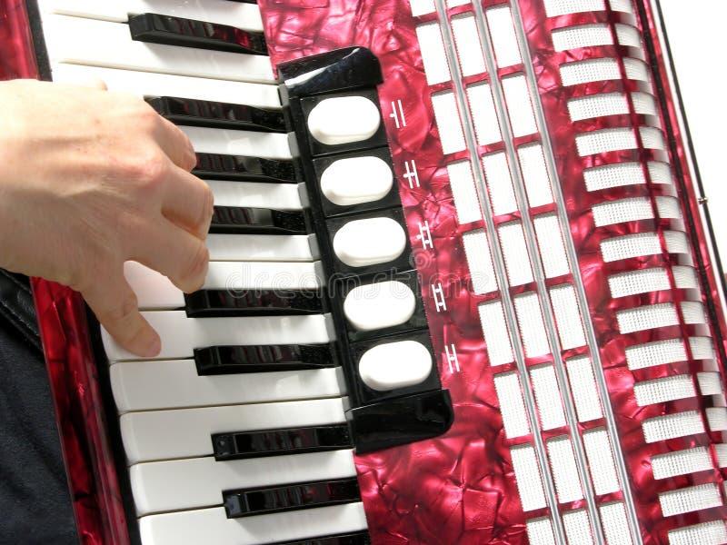 Ausschnitt mit einer Hand, die Akkordeon spielt lizenzfreie stockbilder