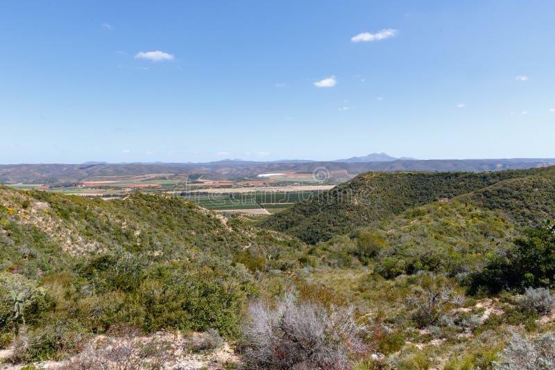 Aussicht über den Bergen zum Obstgarten lizenzfreies stockfoto