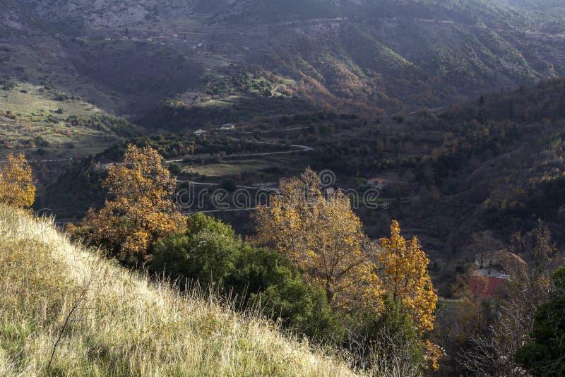 Aussicht auf das Bergtal von der Höhe aus lizenzfreies stockbild