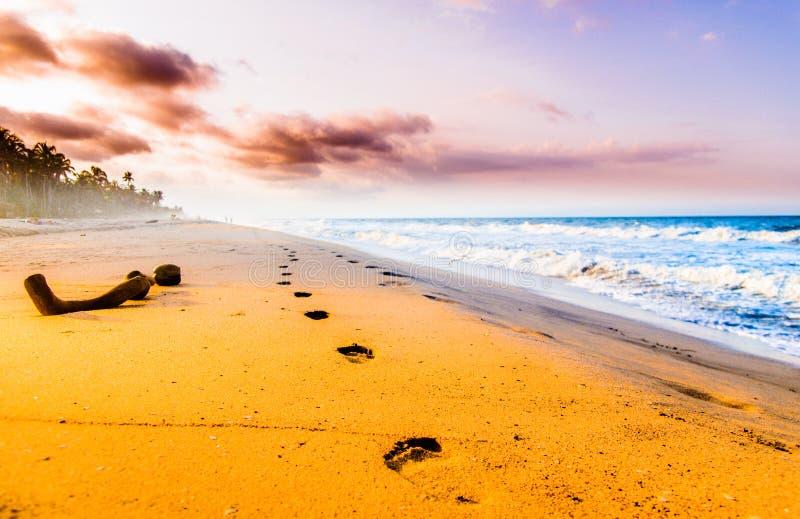 Aussicht auf die Fußgängerpromenade und den Sonnenuntergang am Strand von Tayrona in Kolumbien lizenzfreies stockbild