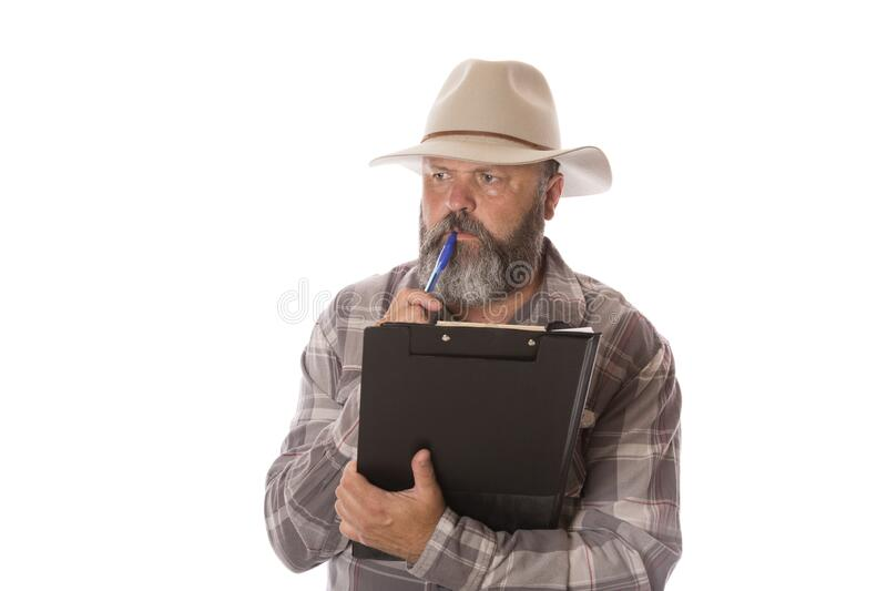 An Aussie Farmer Counting Livestock stock image