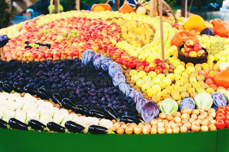Ausstellung mit Herbstfrüchten lizenzfreie stockfotografie