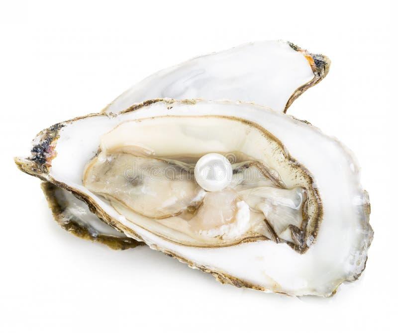 Auster mit der Perlennahaufnahme lokalisiert lizenzfreies stockbild