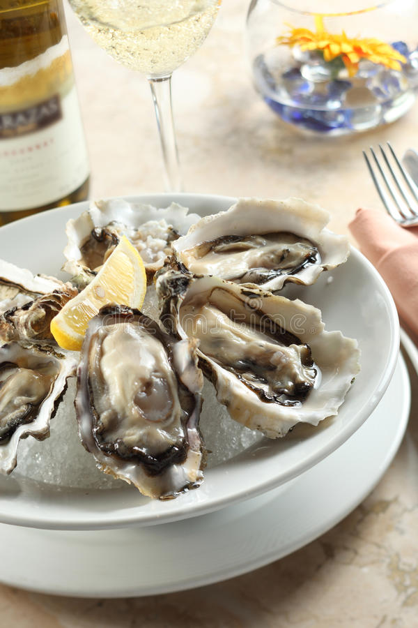 Austern stockbilder