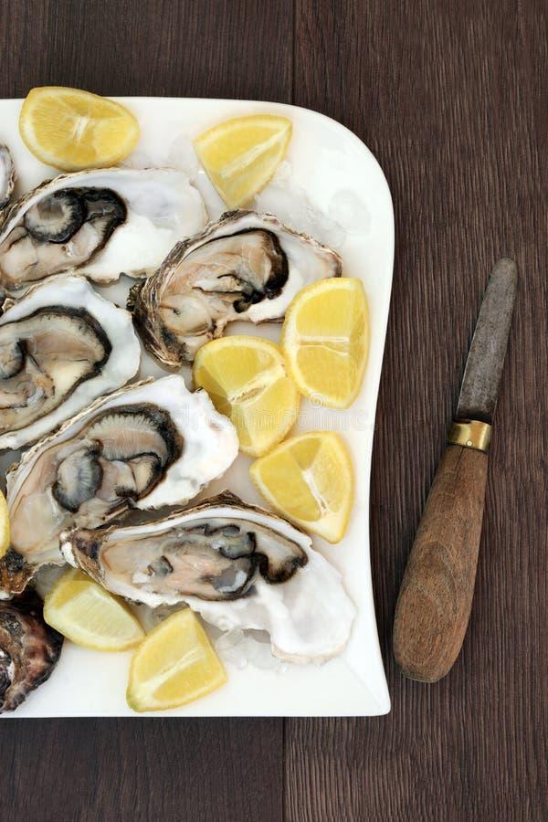 Austern auf Eis mit Zitrone lizenzfreie stockbilder