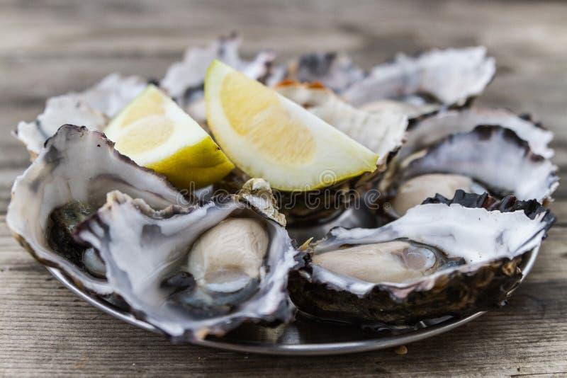 Austern mit Zitrone lizenzfreie stockbilder