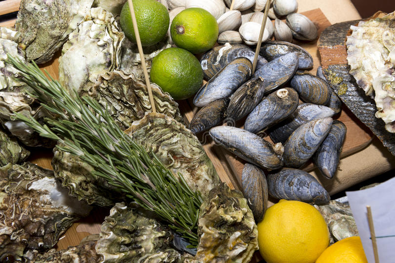 Austern, Muscheln in den Oberteilen, Meeresfrüchte, Miesmuscheln, Lebensmittel, Kalke, Zitronen stockbilder