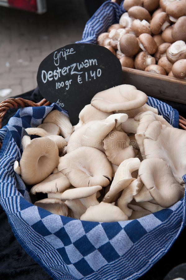 Austernpilze an einem Markt stockfotos