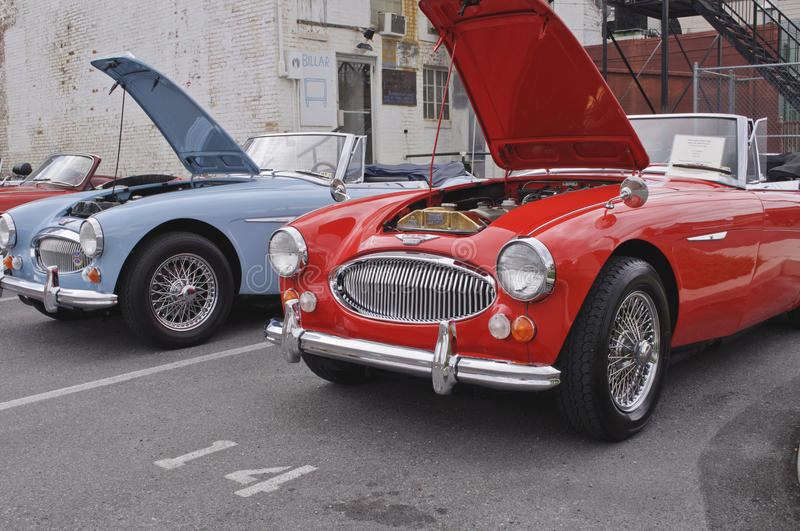 Austin Healey stock images