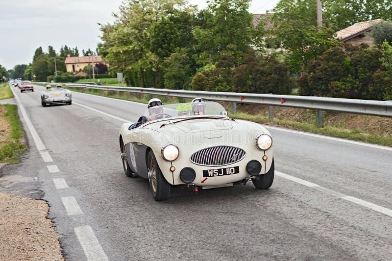 Austin Healey 100 S (1955) in verzameling Mille Miglia 2013 stock afbeeldingen