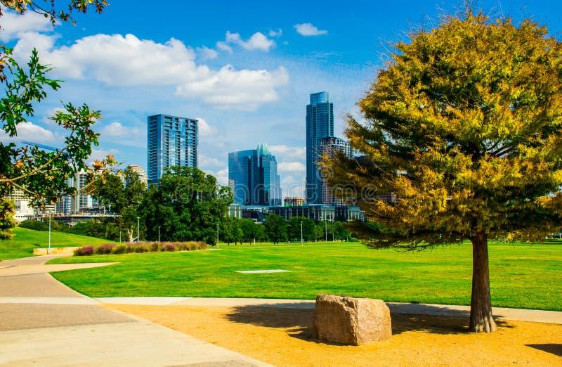 Austin Texas Grass Park dichtbij de de Dalingskleuren Van de binnenstad van de Pijnboomboom stock afbeeldingen