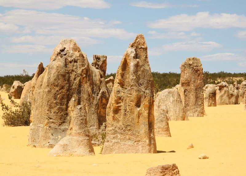 Austrália Ocidental dos pináculos fotografia de stock royalty free