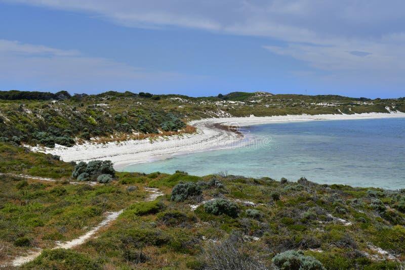 Australië, Rottnest-Eiland stock afbeeldingen