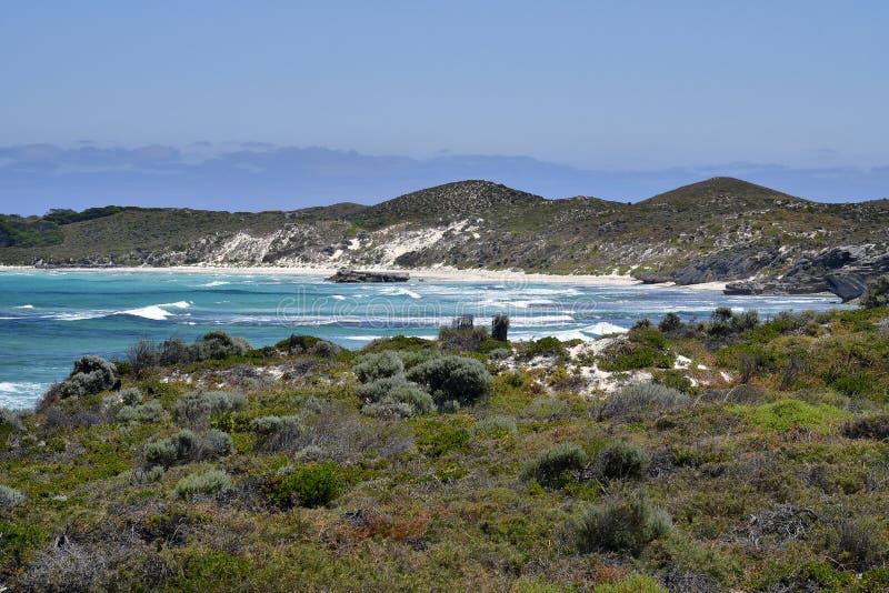 Australië, Rottnest-Eiland stock afbeelding
