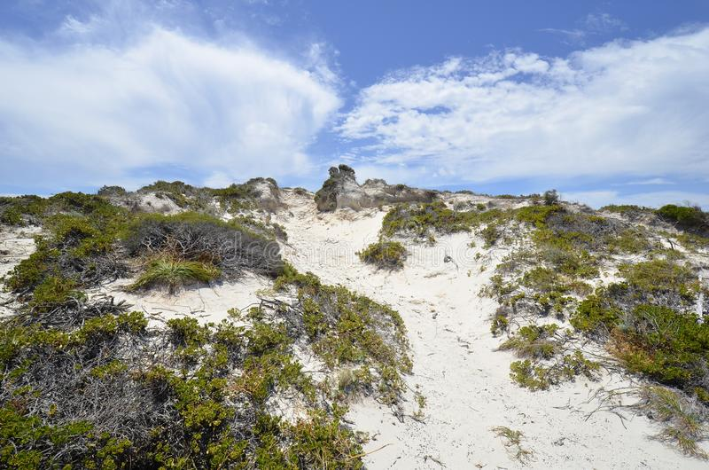 Australië, Rottnest-Eiland royalty-vrije stock afbeelding