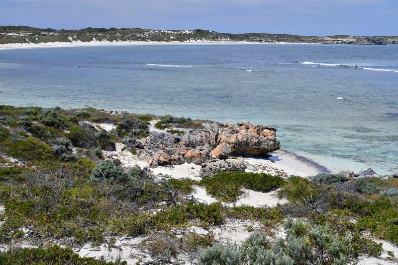 Australië, Rottnest-Eiland stock foto's