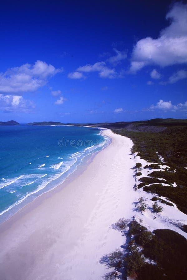 Australia: Antena Portowa Elisabeth plaża w Queensland obraz stock