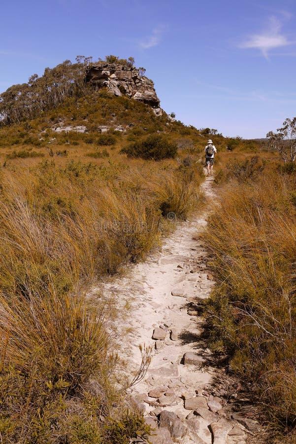 Australia: Blue Mountains man hiking trail royalty free stock photos